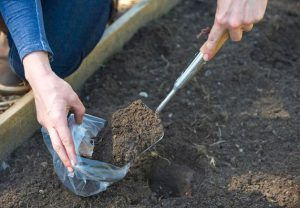 Анализ почвы участка поможет определиться с типом фундамента